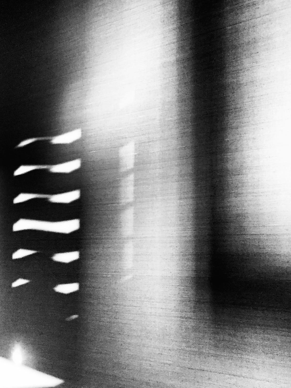 5 Omni © Maureen Haldeman