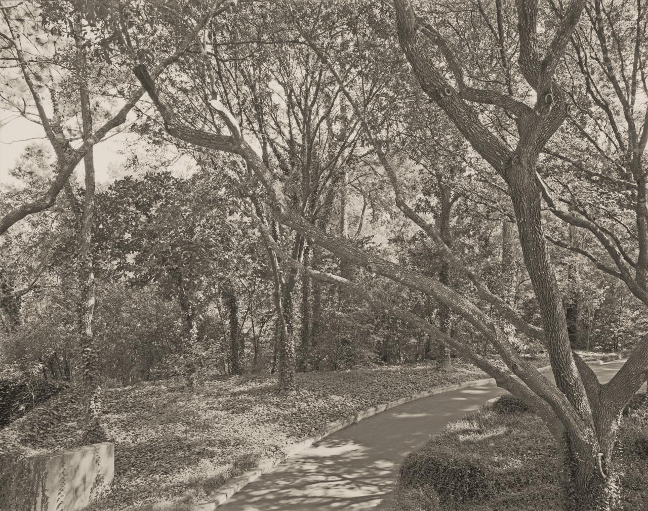 Road To The Maher Estate © E.F. Kitchen