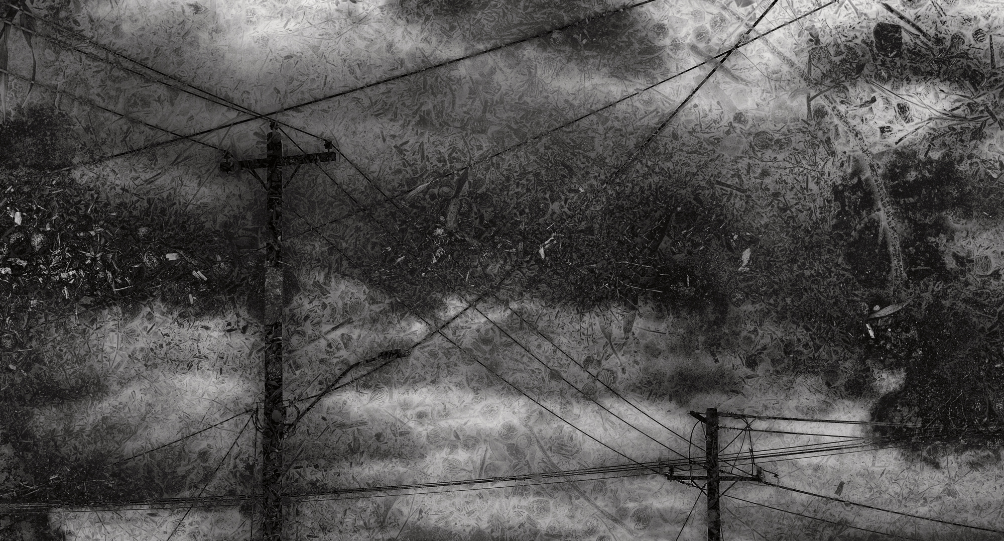 Enronned 2016 Image size Combination of two images from Brunswick. Exhibited at  Alternating Current Gallery February 2017 Scratch Art Space Sydney May 2017 for the Head On Festival Bakery Gallery May-June 2017 Arthouse Gallery Ballarat for the Ballarat International Foto Biennale August- September 2017 Archival digital print on Canson Platine Rag Signed and numbered on print margin with certificate attached to rear of frame. © Christopher Sheils