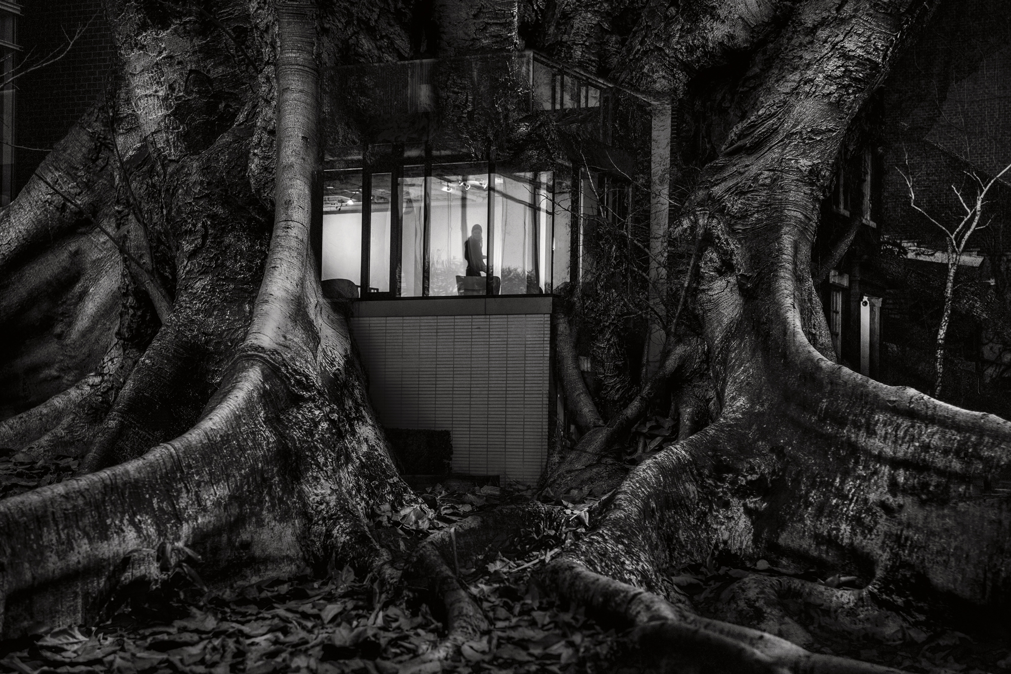 Treehouse 2016 Image size Combination of two images from Brisbane and New York. Exhibited at  Alternating Current Gallery February 2017 Scratch Art Space Sydney May 2017 for the Head On Festival Bakery Gallery May-June 2017 Arthouse Gallery Ballarat for the Ballarat International Foto Biennale August- September 2017 Archival digital print on Canson Platine Rag Signed and numbered on print margin with certificate attached to rear of frame. © Christopher Sheils