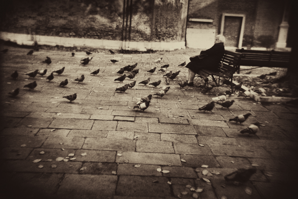 Old_woman and pigeons