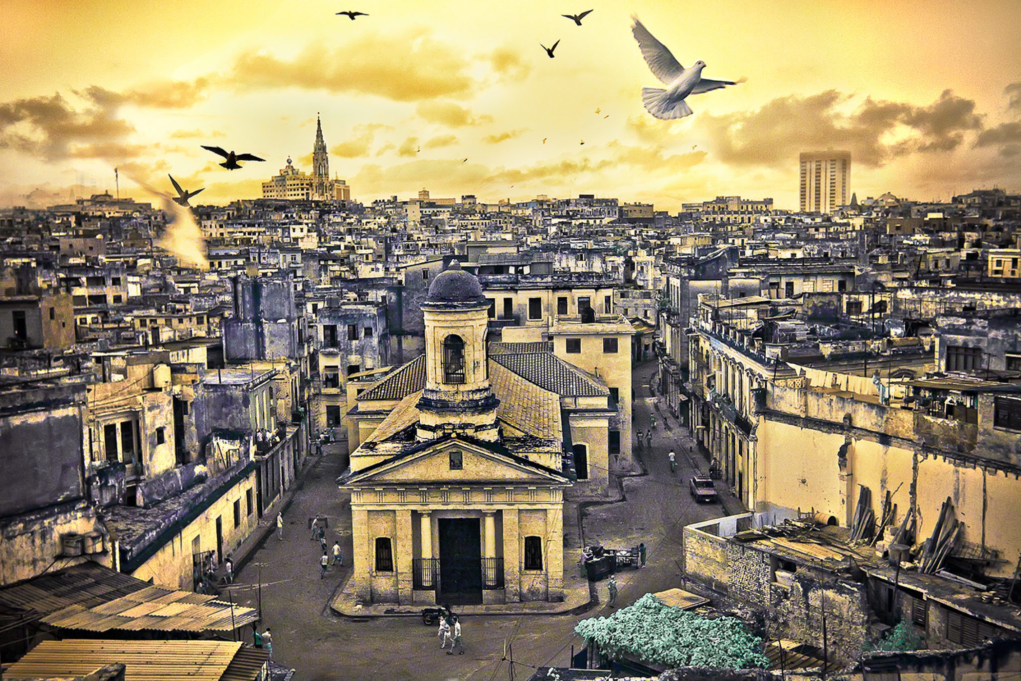 Birds Over Havana 5/15 © EK Waller