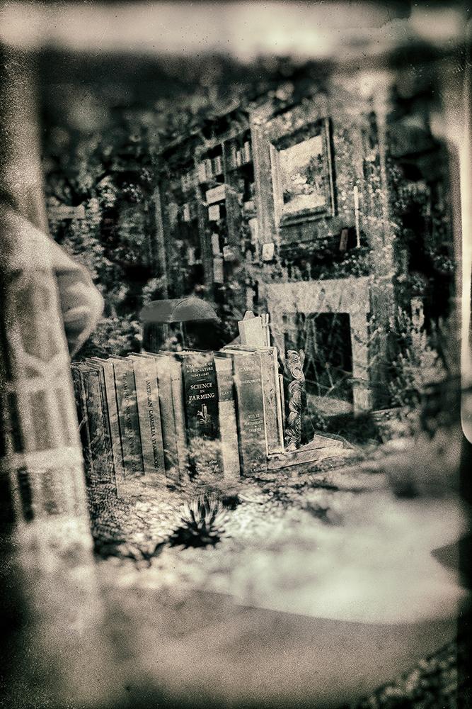 Booked Garden  ©E.K. Waller