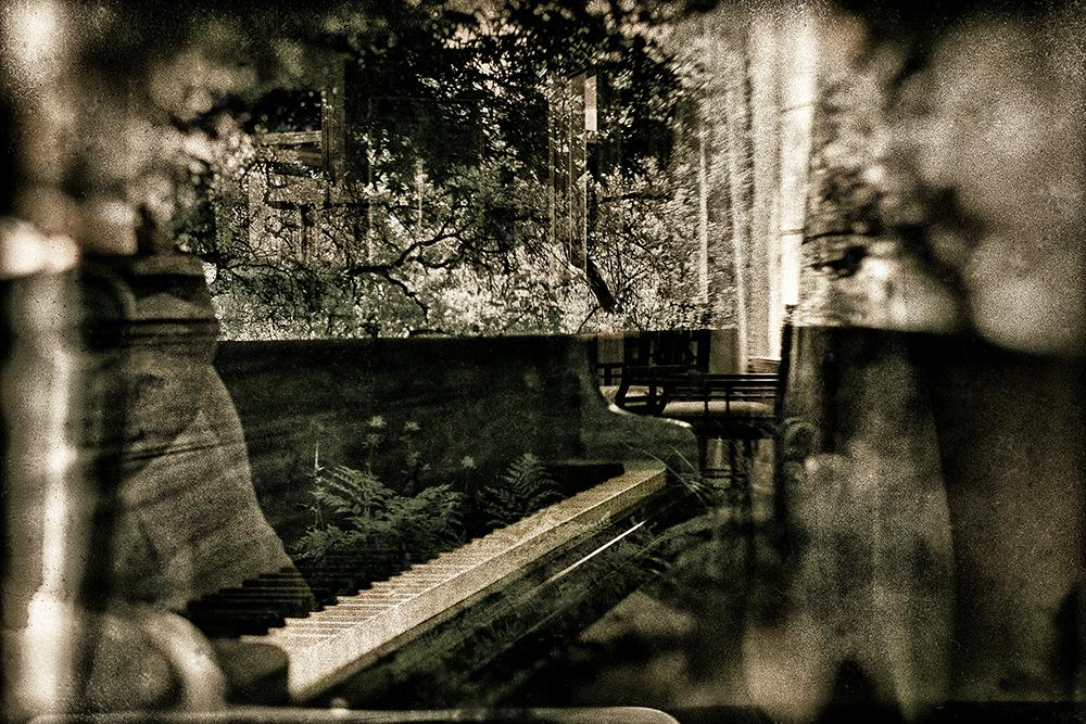 Piano Dichotomy  ©E.K. Waller