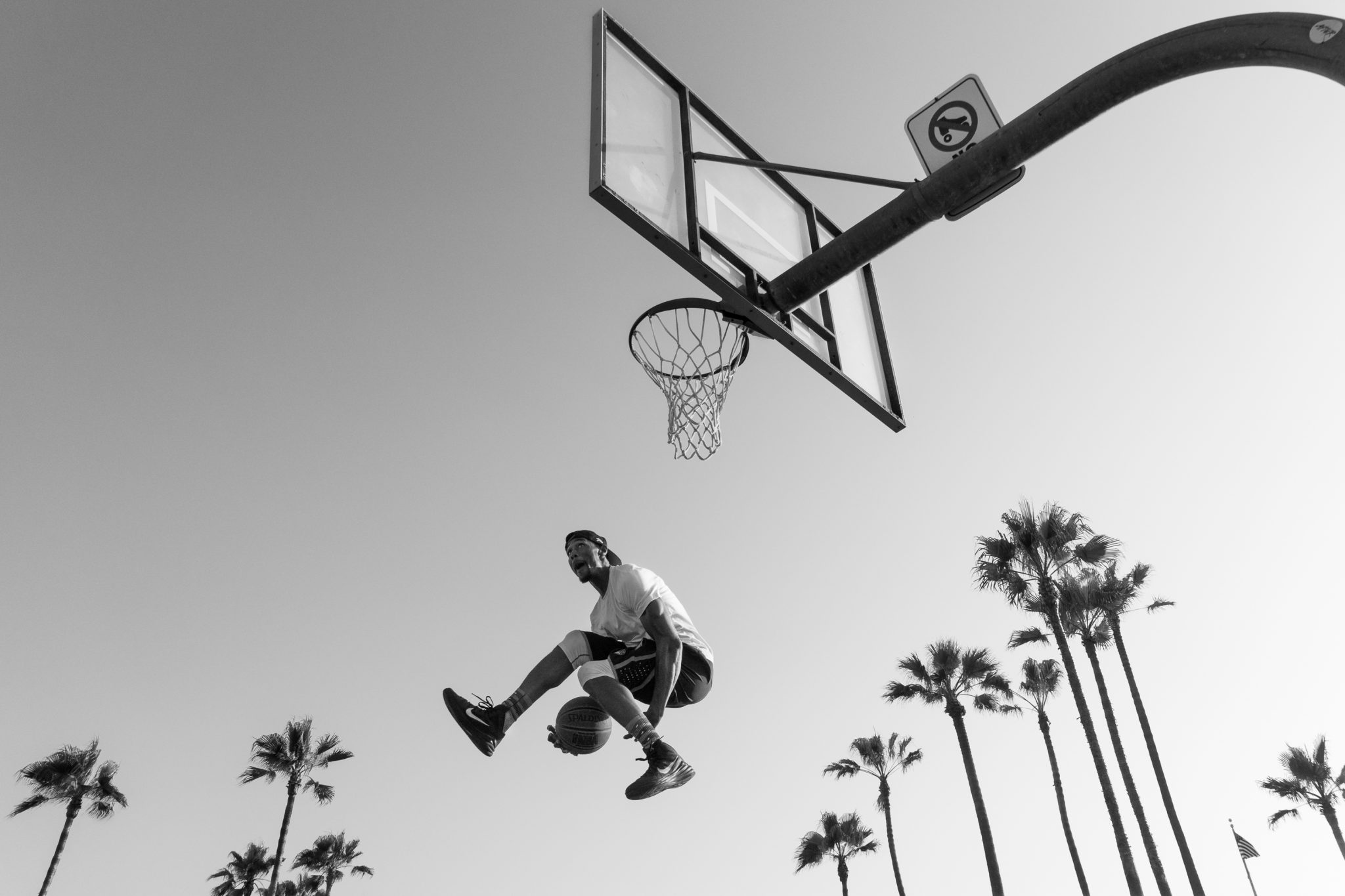 Slam Dunk, Venice, CA