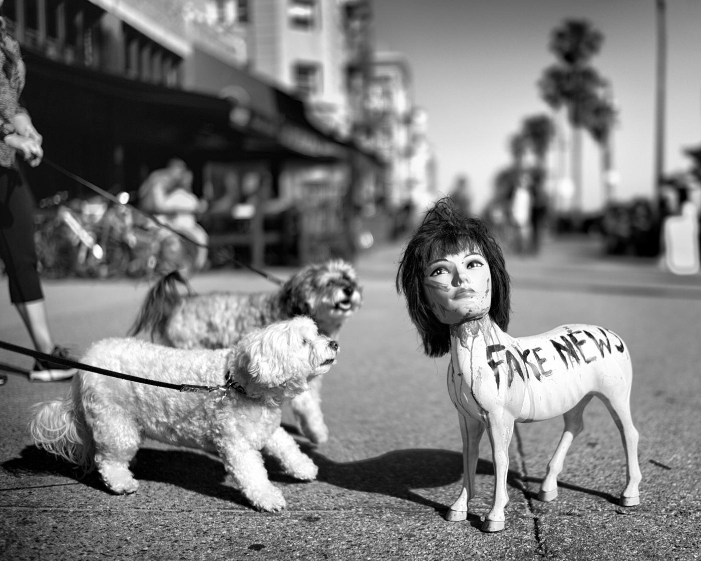 Fake News © Dotan Saguy